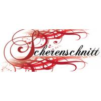 Salon Scherenschnitt logo image