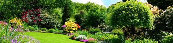 Garten- und Landschaftsbau Rottmair cover image